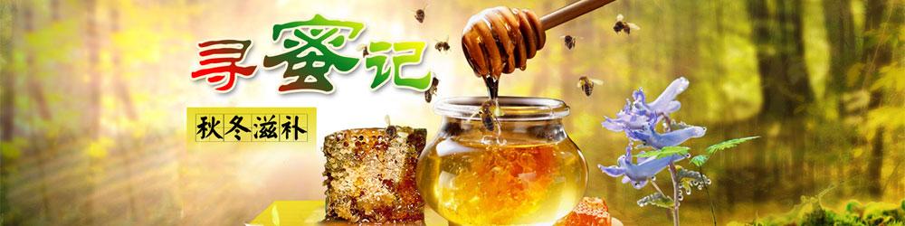 逊克县石氏蜜蜂养殖园