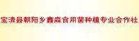 宝清县朝阳乡鑫淼食用菌种植专业合作社