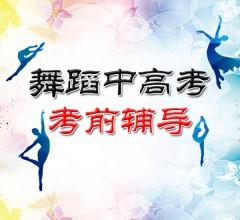 舞蹈中高考考前辅导 200元/小时