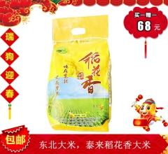 【春节特惠】东北大米 稻花香大米 5kg 免淘洗 营养健康(赠价值26元蒲公英茶1袋)