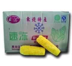 黄玉米家庭装,一箱40穗,尺寸14cm-16cm