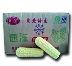 白玉米家庭装,一箱40穗,尺寸14cm-16cm
