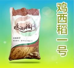 鸡西稻一号 水稻种子 25kg/袋