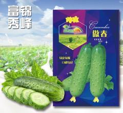 傲春 绿皮绿瓤 口感极佳 黄瓜种子