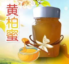 永军正宗东北黑蜂黄柏蜜纯正无添加营养美味蜂蜜 500g