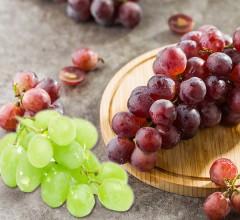 无公害 葡萄 东北 新鲜水果 4元/斤