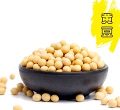 黄豆 500g