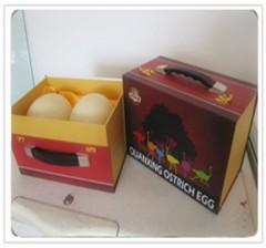 精装食用鸵鸟蛋 清明节3日、4日、5日特惠6折(原价240元) 每人限购两盒/4只