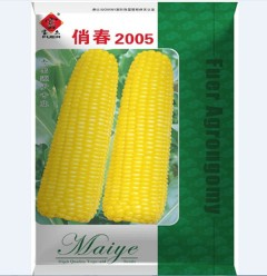 俏春2005    200克/袋