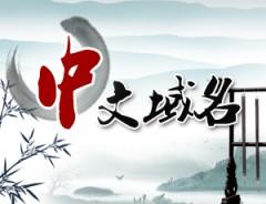 中文域名/中文地域域名/.中国/市场价320元