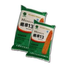 玉米杂交种  嫩单13    5kg/袋