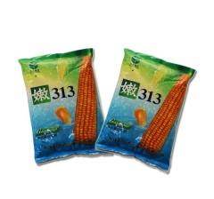 玉米种子  嫩313  6000粒/袋