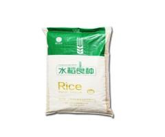 水稻杂交种   水稻良种