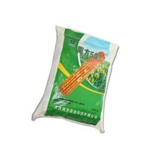玉米种子  同方501  5kg/袋