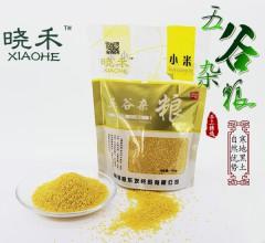 黄小米 东北特产 五谷杂粮  400g