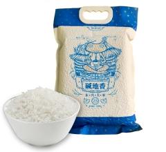 东兴大米 真空袋 碱地香 2.5kg