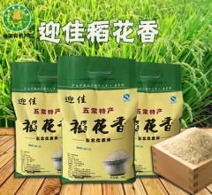 稻花香2号手提袋(有机)  5kg 新米黑龙江正宗东北五常稻花香大米