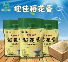 稻花香2号手提袋(绿色)  5kg 新米黑龙江正宗东北五常稻花香大米