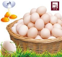 土鸡蛋 新鲜 农家散养土鸡鸡蛋