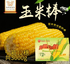 粘的笨 玉米棒 6袋*2穗/箱 东北粘苞米黏玉米甜玉米年货黑龙江特产农家冻糯玉米