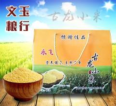 古龙小米礼盒 5kg(1kgx5袋) 黑龙江肇源优质产区