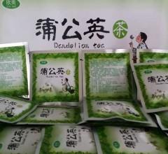 纯天然野生蒲公英茶(白盒)30g