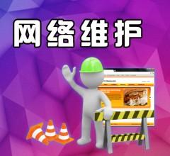 网络维护网络布线系统维护网络共享打印机