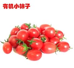 李山 有机小柿子 5斤/箱