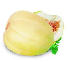 东北香瓜甜瓜无农药好水果