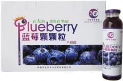 木糖醇蓝莓颗粒果汁/野生蓝莓