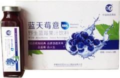 蓝天莓意/野生蓝莓