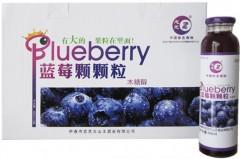 新无糖颗粒/野生蓝莓