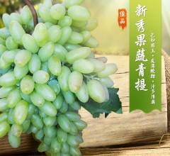 新秀果蔬 青提 新鲜水果