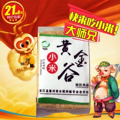 龙江特产 黄金谷小米(200g*4)(400g*2) 200g*4