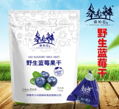 盛柏蓝 伊春特产野生蓝莓干 250g