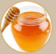 椴树蜂蜜25/斤