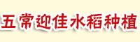五常市迎佳水稻种植农民专业合作社