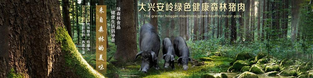 大兴安岭绿森林食品有限公司