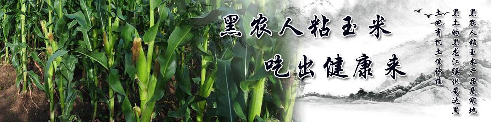 安达市黑农人粘玉米种植专业合作社